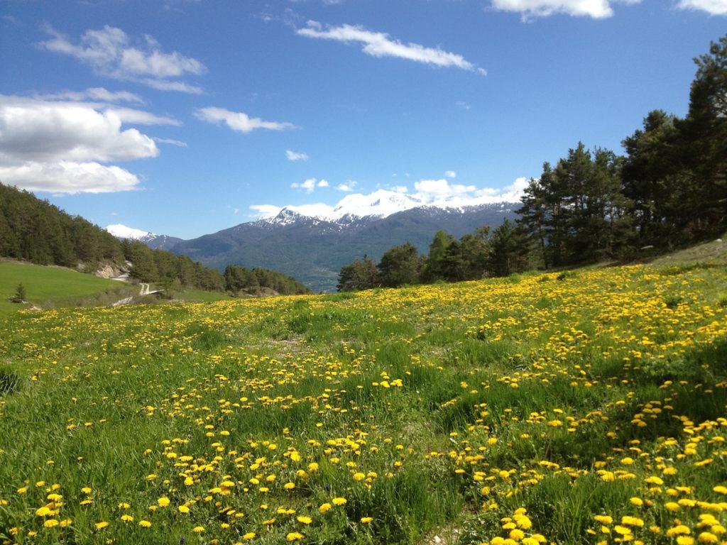 Mont Catinat